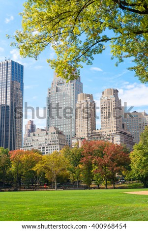 Foliage in Central Park, New York City. - stock photo