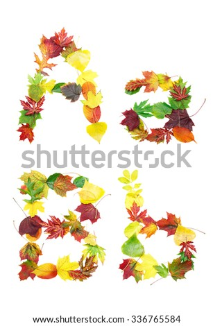 Font made of autumn leaves isolated on white. Letters a and b. - stock photo