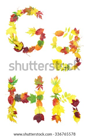 Font made of autumn leaves isolated on white. Letters g and h. - stock photo