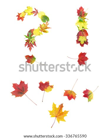 Font made of autumn leaves isolated on white. Question mark, exclamation mark and a couple of points and dots. - stock photo