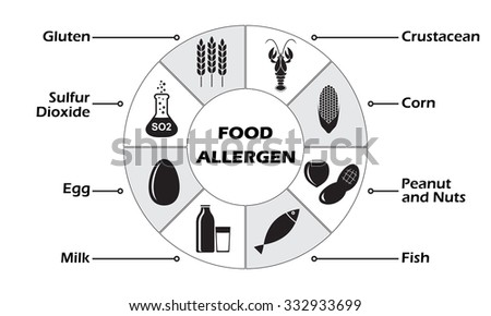 Food allergen icons set on white stock illustration 332933699 food allergen icons set on white background infographics template maxwellsz