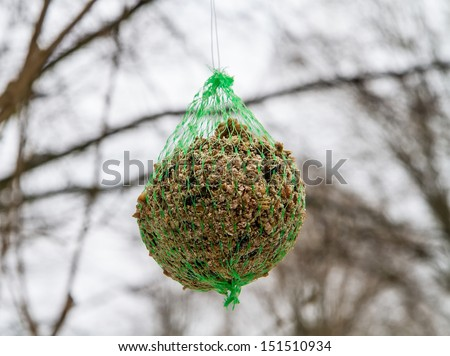 food for birds outdoors - stock photo