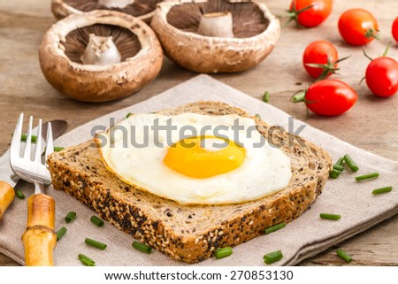 food, fried egg on a sandwich with mushrooms and tomatoes  - stock photo