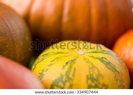 food, harvest, season and autumn concept - close up of pumpkins - stock photo
