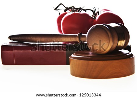 Food law image with gavel, book and food. - stock photo