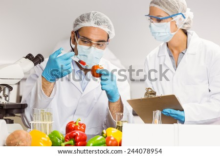 Food scientist injecting a tomato at the university - stock photo
