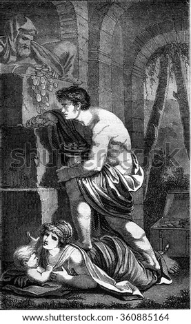 Fool's Gold, vintage engraved illustration. Magasin Pittoresque 1847. - stock photo