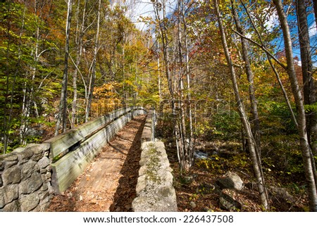 Foot bridge located on the Appalachian Trail in George Washington Forrest on the Blue Ridge Parkway - stock photo
