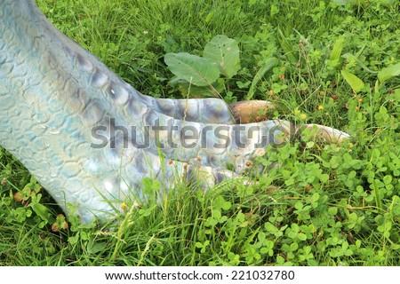 foot of a dinosaur - stock photo