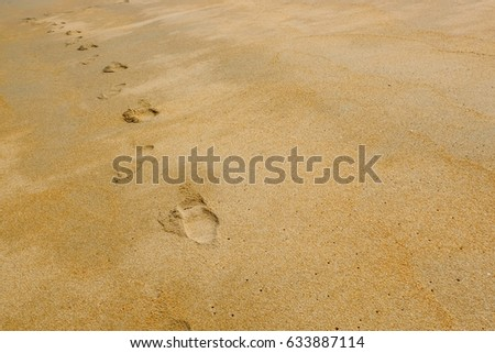Foot print on sandy beach background