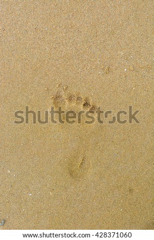 foot prints on sand at the beach