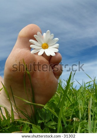 Foot w/daisy. Vertical version - stock photo