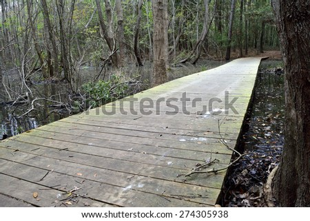 Footbridge in the maritime forest, Myrtle Beach State Park - stock photo