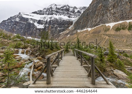 Footbridge over a stream in the Rocky Mountains - Jasper National Park, Alberta, Canada - stock photo