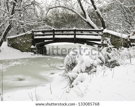 Footbridge over stream in winter woods, northern Illinois