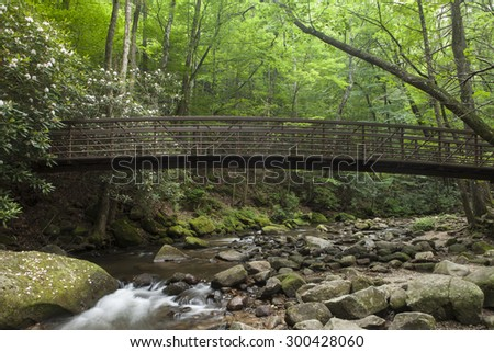 footbridge over stream with rhododendrons in South Carolina - stock photo