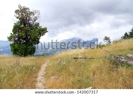 Footpath and tree in mountain near Ardasan, Turkey