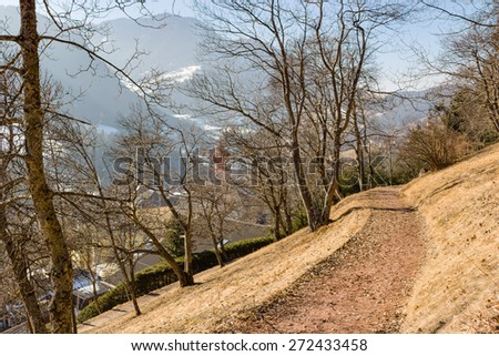 Footpath in a forest of green pines and firs on Dolomites snowy mountains in winter - stock photo