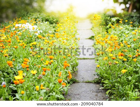 Footpath in a garden. Way to freedom. - stock photo