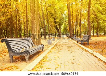 Footpath in beautiful autumn park
