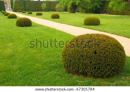 Footpath in green garden or park, background