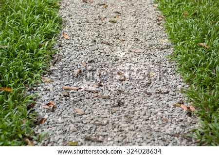 footpath in park. - stock photo