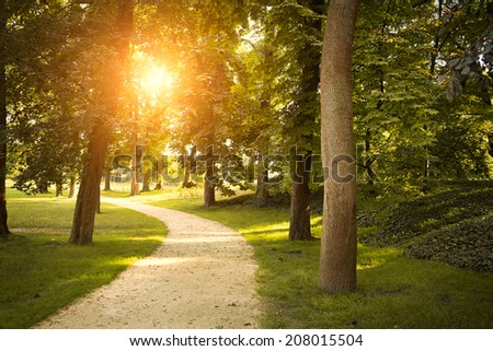 Footpath in the park - stock photo