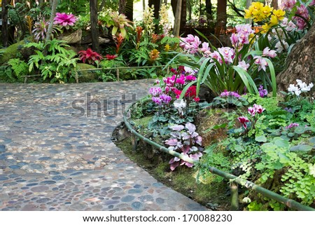 footpath with beautiful flowers in the beautiful garden - stock photo