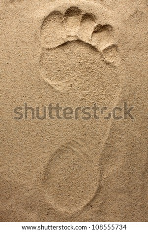 Footprint  feet on fine the beach sand - stock photo