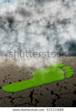 Footprint made of green grass in the middle of a desert / Carbon footprint and climate - stock photo