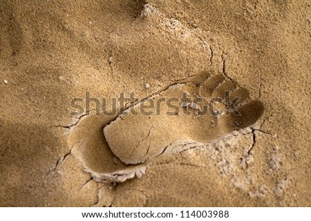 Footprint on the sand with shadows - stock photo