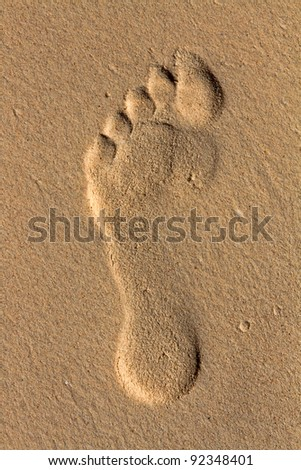 footprint on the sea-sand at sunset sunshine - stock photo