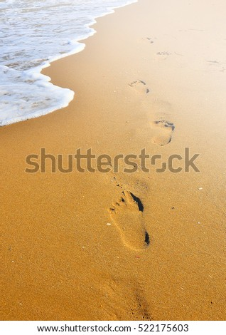 Footprint over the sand of the shoreline in summer