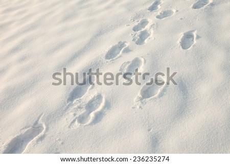 Footprints in new deep snow on snowy meadow. - stock photo