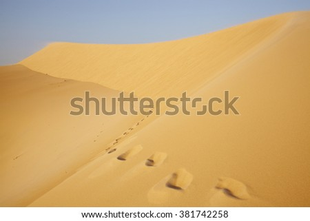 Footprints in the desert under blue sky going to the faraway  - stock photo