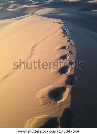 Footprints in the sand dunes at sunset - stock photo