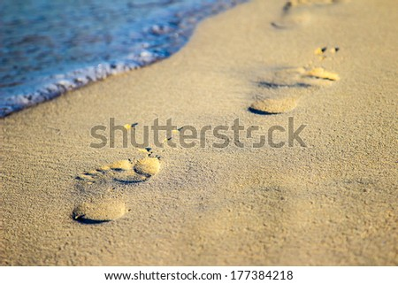 Footprints in the sand leading into the sea - stock photo
