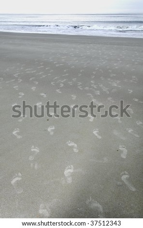 Footprints in the sand leading to the ocean.