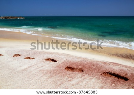 Footprints in the sand of the tropical beach of Sri Lanka near the azure sea - stock photo