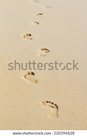 Footprints in the sand on a secluded island. Routes Tourism