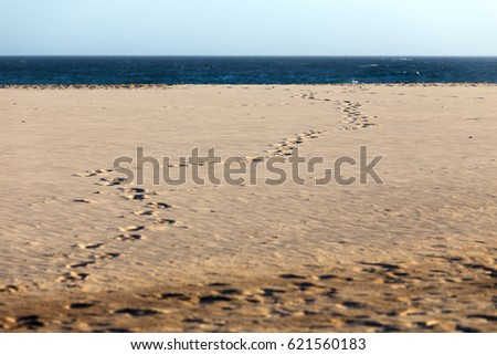 Footprints in the sand on a summer beach winding towards the deep blue ocean and the distant horizon.