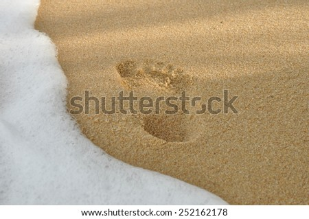 footprints in the sand on the beach - stock photo
