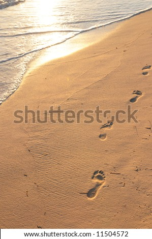 Footprints on sandy tropical beach at sunrise - stock photo