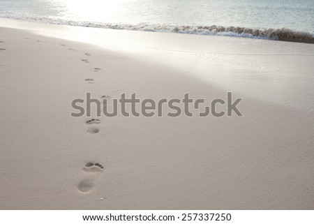 Footprints on the beach in Antigua - stock photo