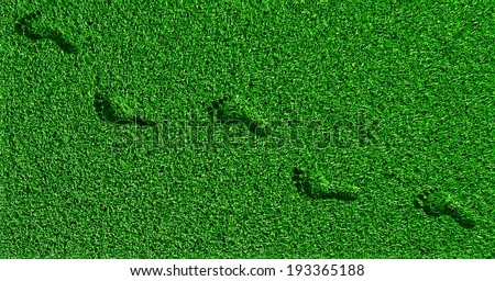 footprints on the grass in green grass - stock photo