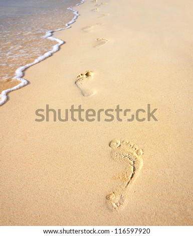 Footprints on the sandy beach along the sea. Steps in the Sand - stock photo