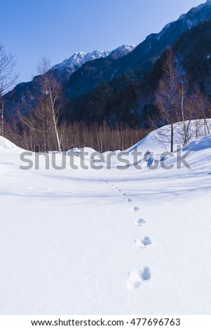 Footprints /  This photo was captured at Nagano, Japan.