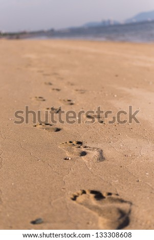 footstep tracks printed in the sand on the beach
