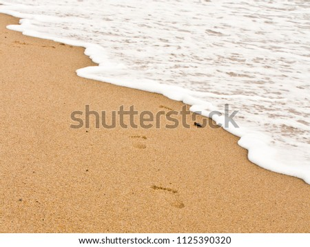 Footsteps Along the Beach Waves
