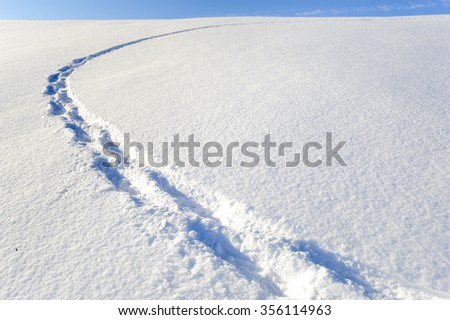 footsteps of an hiker in fresh powder snow